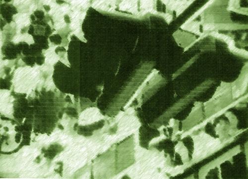 回転ドア写真11.JPG