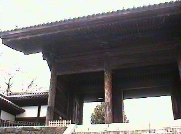 東郷寺3dvstill.jpg