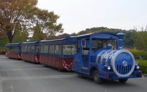 P1060735-2.JPG